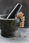 White pepper in a mortar