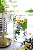 Herb tea with thyme