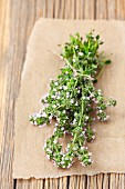 A bunch of fresh, flowering, organic thyme