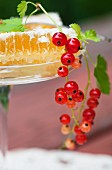 A honeycomb with redcurrants (close-up)