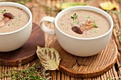 Cream of porcini mushroom soup