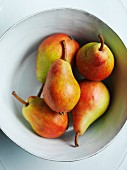 Clapp's Favourite pears in a bowl