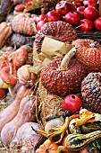 An autumnal arrangement featuring pumpkins, squash and pomegranates at a market