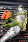 A whole trout filled with lemon on a barbecue