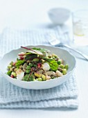 Legume salad with young chard leaves and mozzarella