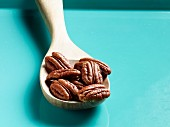 Pecan nuts on a wooden spoon