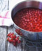 Redcurrant juice being made