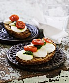 Two slices of grilled bread with mozzarella, tomato and basil pesto on pot holders