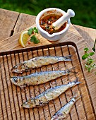 Grilled sardines with a spicy sauce