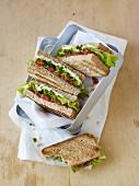 Tomato and hummus sandwiches
