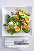 A garden salad with soft-boiled eggs and toast soldiers