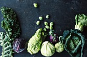 Different varieties of cabbage