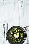 Green tomato and kiwi salad with buffalo mozzarella