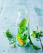 A picture representing green smoothies: fresh herbs and flowers in a glass bottle and next to it
