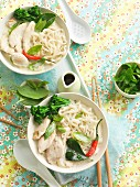 Rice noodles with chicken and chillis (Asia)