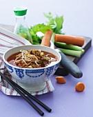 Beef soup with noodles, carrots and celery (Asia)
