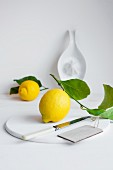 Lemons with leaves with a white ceramic juicer in the background