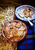 Sweet potato gratin on hay bales