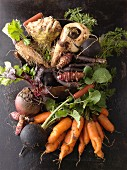An arrangement of various root vegetables