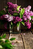 Vase of lilac