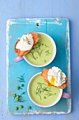 Cream of pea soup with smoked salmon crostini with poached egg