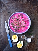 Cold beetroot soup with beetroot leaves, yoghurt, radishes and dill