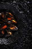 Steamed mussels on a black plate
