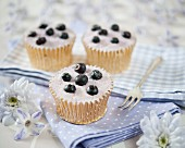 Cupcakes decorated with sugared blueberries