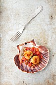 Fried scallops on tomato salsa
