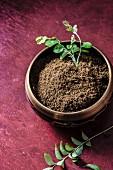 Ground coriander
