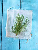 Fresh rosemary sprigs on a light blue wooden surface
