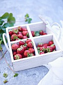 Strawberries in a segregated wooden box