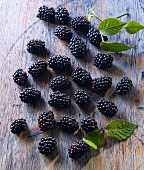 Blackberries and blackberry leaves