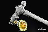 A silver-coated kaffir lemon with a hammer