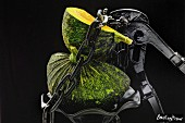 A green squash with a chain and a pair of pliers