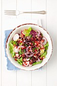 Salad with grilled octopus, radishes and pomegranate seeds