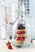 Various tartlets with summer fruits under a glass cloche