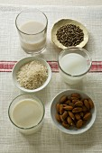 A glass of hemp milk, rice milk and almond milk and bowls of hemp seeds, rice and almonds