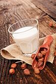 Hazelnuts and a glass of hazelnut milk