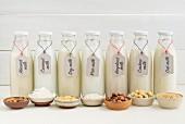 Almond milk, coconut milk, soya milk, rice milk, hazelnut milk, cashew nut milk and oat milk