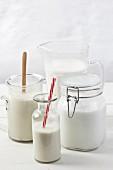 Various types of vegan milk