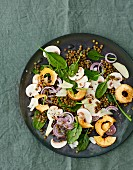 Mushroom carpaccio with spinach and puy lentils