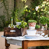 Assorted herbs and wine on a wooden table in the garden