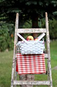 Basket of apples on wooden ladder in garden