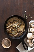 Mushroom sauce and fresh mushrooms