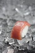 Nigiri sushi with tuna fish on ice