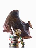 Delicatessen: Breton turbot and vintage sardines