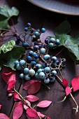 Turquoise berries and autumn leaves as table decoration