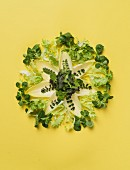 Various types of lettuce decoratively arranged on a yellow surface