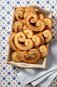 Palmiers in a wooden crate